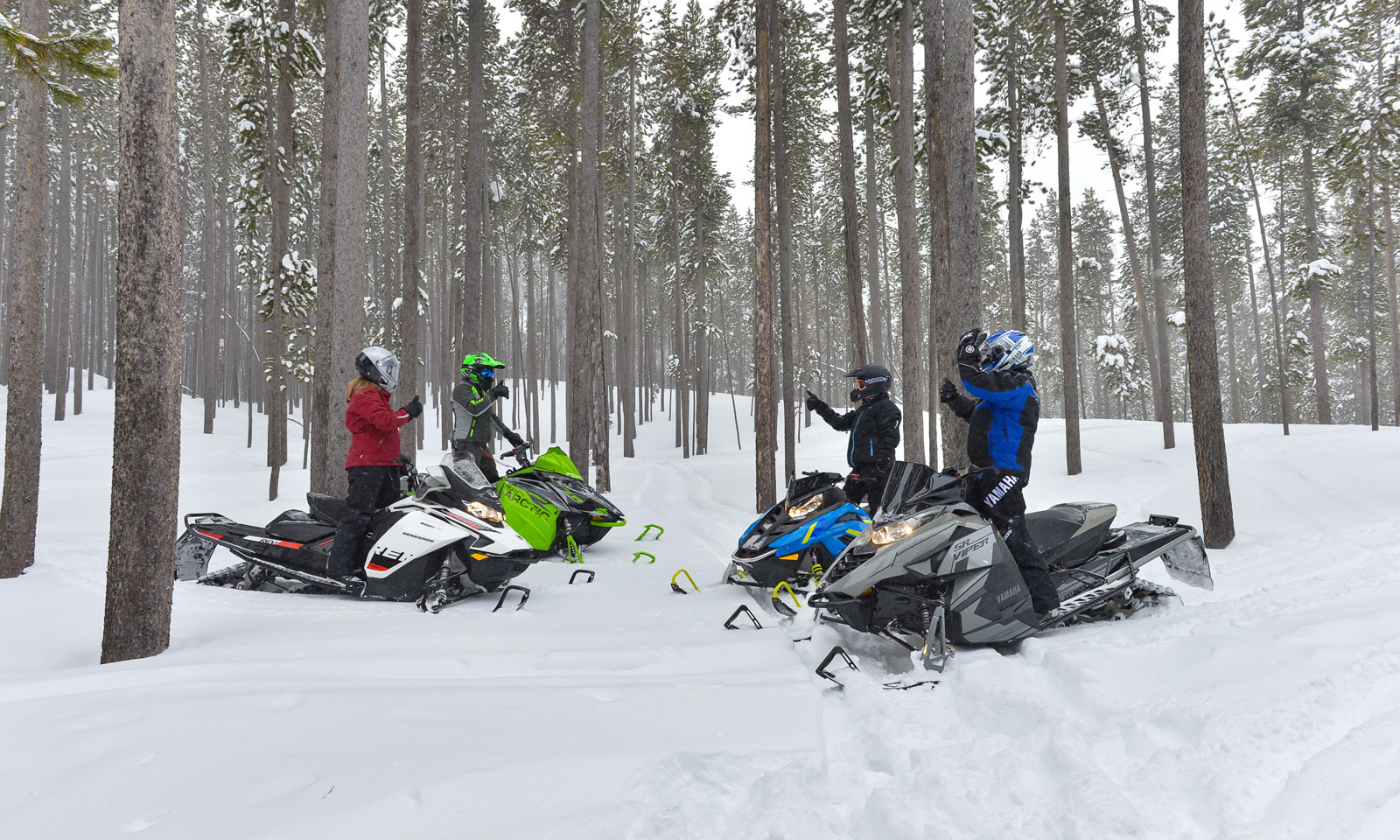 Snowmobilers gathered together as group